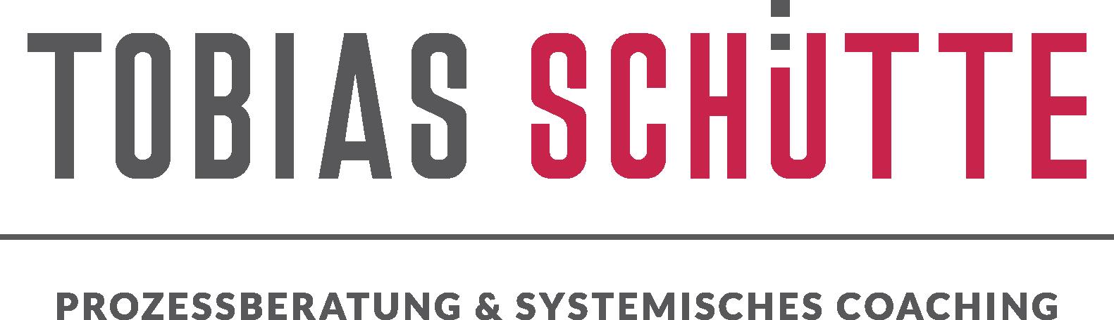 Logo-Tobias Schütte-Prozessberatung & Systemisches Coaching